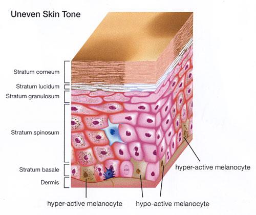 Skin brightening serum online dating 3